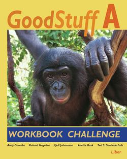 Good Stuff A Workbook Challenge av Andy Coombs