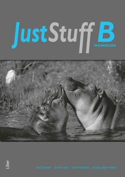 Just Stuff B Workbook av Andy Coombs