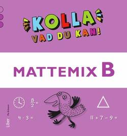 Kolla vad du kan Mattemix B av Pia Eriksson