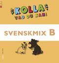 Kolla vad du kan Svenskmix B av Gitten Skiöld